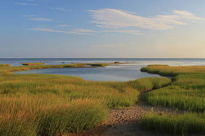 Paines Creek Marsh And Cape Cod Bay Print by John Burk