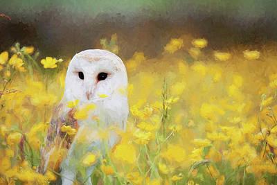 Painted Barn Owl Print by Ericamaxine Price