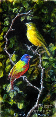 Bunting Painting - Painted-buntings Pair by David Tabor