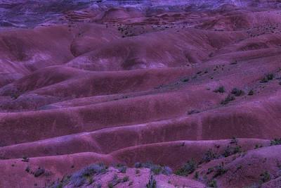 Painted Desert Photograph - Painted Desert Azorina by Garry Gay