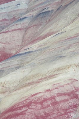 Clay Photograph - Painted Hills Textures 3 by Leland D Howard