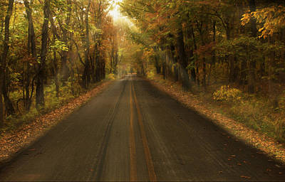 Maple Season Painting - Painted Lane by Jonas Wingfield