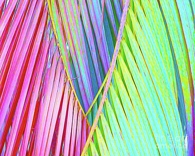 Beach Landscape Mixed Media - Painted Palms by Chris Andruskiewicz