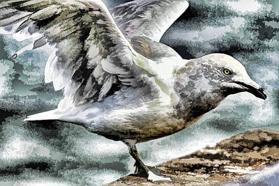 Painted Seagull Print by Geraldine Scull