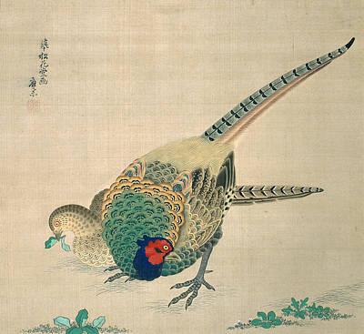 Maruyama Okyo Painting - Pair Of Pheasants by Maruyama Okyo