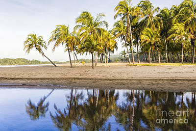 Reflection Photograph - Palm Beach Reflection by Oscar Gutierrez