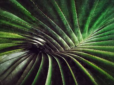 Palm Leaf Print by Kathleen Alhaug