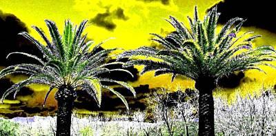 Napa Valley Digital Art - Palm Paradise   by Will Borden