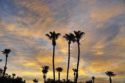 Palm Springs Convention Center Photograph - Palm Springs  by Kati Kereki