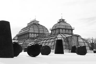 Cslanec Photograph - Palmhouse - Vienna by Christian Slanec