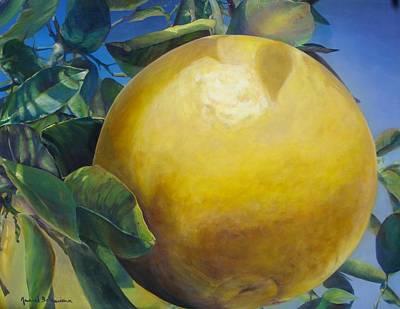 Pamplemousse Original by Muriel Dolemieux