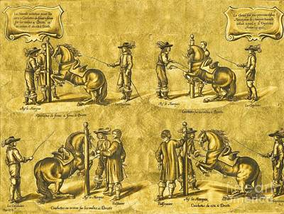 1596 Painting - Panel With Dressage Scenes From The Duke Of Newcastle's Treatise On Horsemanship by Celestial Images
