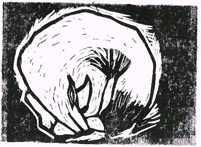 Pangolin Drawing - Pangolin Print by Louise Fletcher