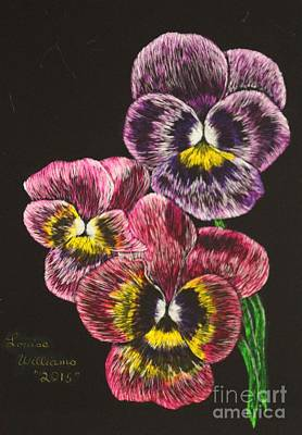 Google Drawing - Pansy Bouquet by Louise Williams