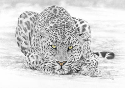 Leopard Mixed Media - Panthera Pardus - Leopard by Steven Paul Carlson