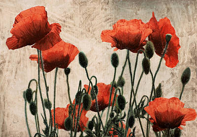 Poppy Field Painting - Papaveri Rossi by Guido Borelli