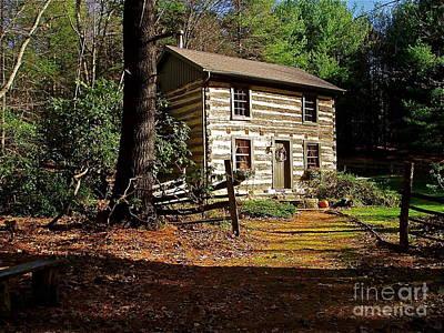 Log Cabin Photograph - Paradise by E Robert Dee