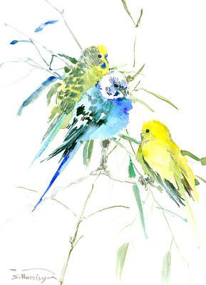 Parakeet Drawing - Parakeets by Suren Nersisyan