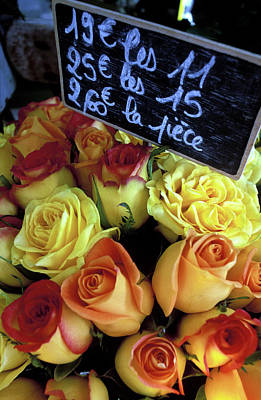 Paris Roses Print by Kathy Yates