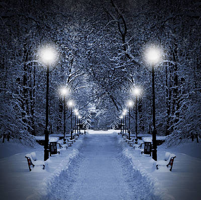 Snowy Night Photograph - Park At Christmas by Jaroslaw Grudzinski