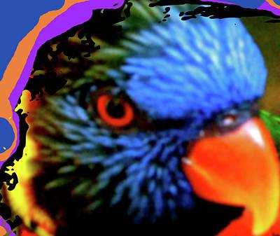 The View Mixed Media - Parrot Colors by Debra     Vatalaro