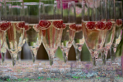 Raspberry Digital Art - Party Hard by Jan Amiss Photography