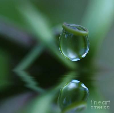 Passionfruit Photograph - Passion Drop by Kym Clarke