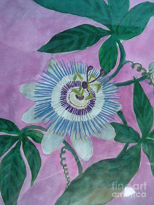 Passiflora Painting - Passion Flower by Melina Mel P