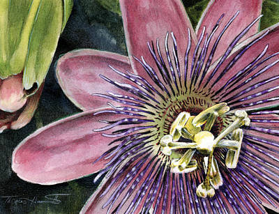 Passiflora Painting - Passion Flower by Thomas Hamm