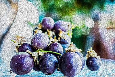 Passion Fruit Digital Art - Passion Fruits by Jon Ma