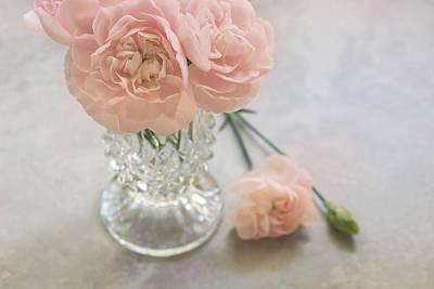 Pink Carnation Photograph - Pastel Pretties by Kim Hojnacki