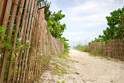 Key Biscayne Photograph - Path To The Beach by Matt Tilghman