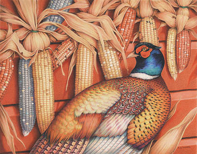 Pheasant Drawing - Patterns Of Indian Summer by Amy S Turner