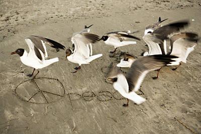 Peace Dance Original by Marilyn Hunt