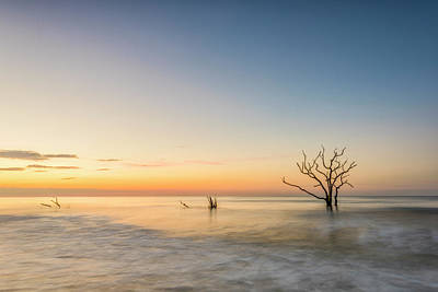 Edisto Photograph - Peace In Botany by Jon Glaser