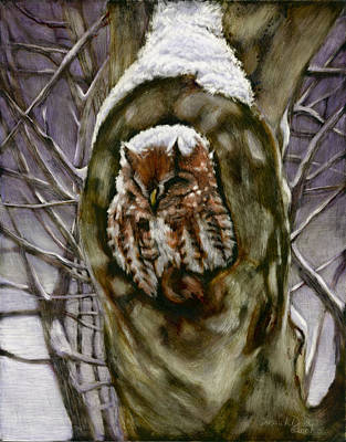Winter Storm Mixed Media - Peace In The Storm - Eastern Screech Owl by Susan Donley