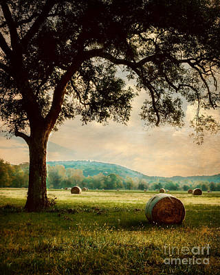 Photograph - Peace In The Valley by Tamyra Ayles