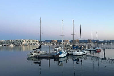Marina Del Rey Photograph - Peaceful Harbor by Art Block Collections
