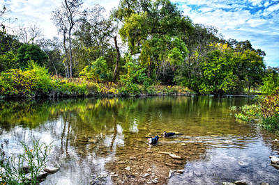 Country Photograph - Peaceful Morning On Cibolo Creek by Lynn Bauer