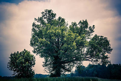 Photograph - Peaceful Place Along Busy Highway  by Off The Beaten Path Photography - Andrew Alexander