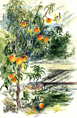 Peach Tree Print by Lily Hymen