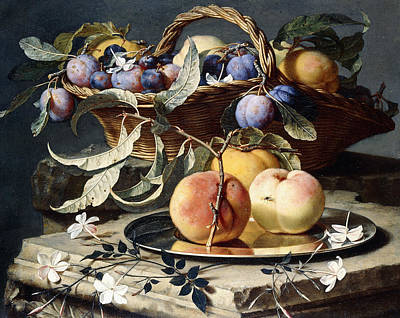 Peaches And Plums In A Wicker Basket, Peaches On A Silver Dish And Narcissi On Stone Plinths Print by Christian Berentz