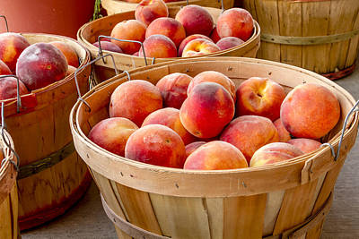 Peaches For Sale Print by Teri Virbickis