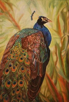 Peacock Beauty Original by Phyllis Barrett