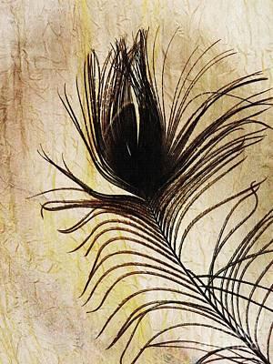 Peacock Digital Art - Peacock Feather Silhouette by Sarah Loft