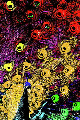 Peacock Digital Art - Peacock Fireworks . R1936 by Wingsdomain Art and Photography