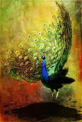 Peacock Painting - Peacock In Full Color by Christina VanGinkel