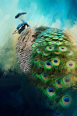 Peacock Photograph - Peacock In Winter by Jai Johnson