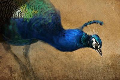 Digital Art - Peacock Light by Aaron Blaise