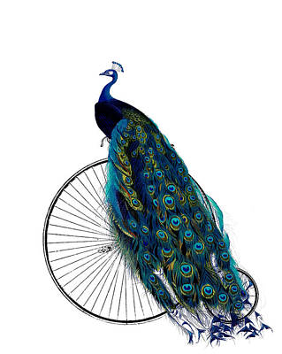 Peacock Digital Art - Peacock On A Bicycle, Home Decor by Madame Memento